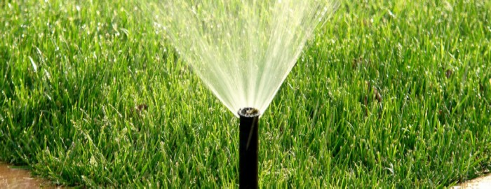 How Long to Water Grass Seed With Sprinkler Heads