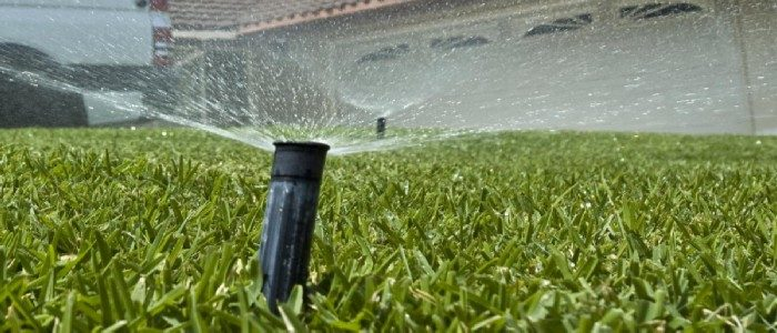 When to Stop Watering New Grass Seed