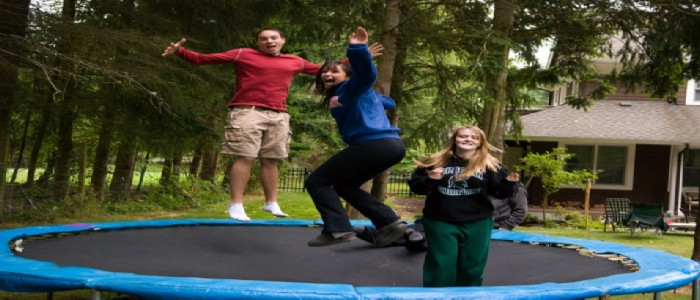 best mini trampolines with handlebars for adults